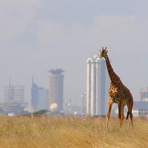 Kenya – Scheda Paese