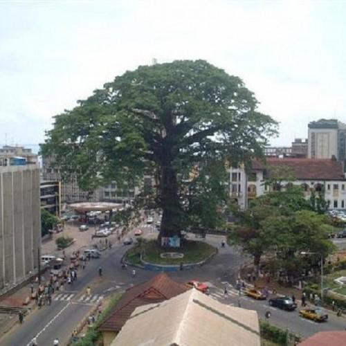 Sierra Leone – Scheda Paese