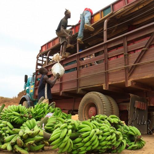 Perché la Nigeria importa alimentari per 5 miliardi all'anno