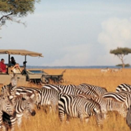 Kenya, la ripresa del settore turistico