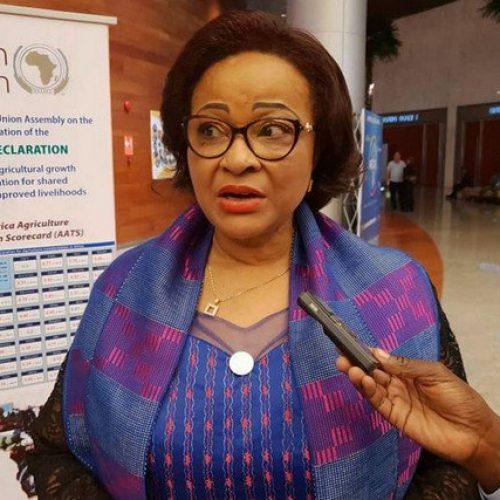 Unione Africana, ridurre le importazioni di cibo in Africa