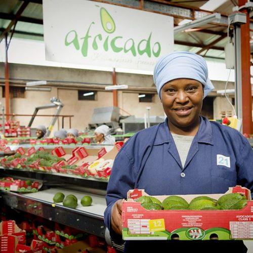 La rivoluzione verde in Africa attira nuovi fondi di investimento