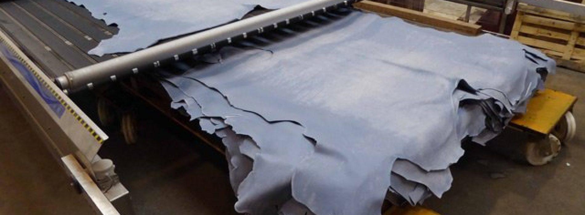 Tanzania, migliorare la qualità delle pelli per l'export