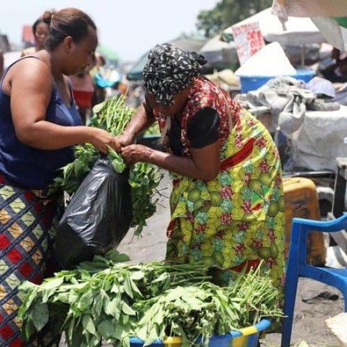 Africa Subshahariana: l'economia si contrarrà del 3.3%