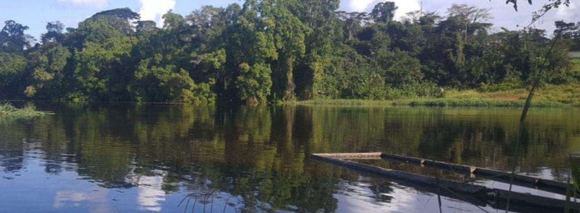 CAMEROON-CONGO: verso la ripresa del progetto idroelettrico da 600 MW sul fiume Dja/Ngoko