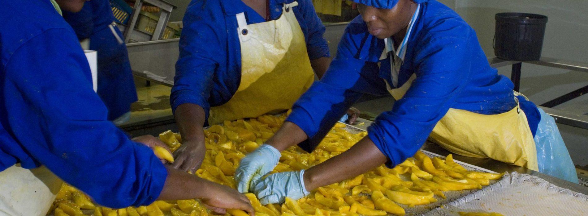 Africa: la tedesca KfW istituisce un finanziamento di emergenza per l'agroalimentare