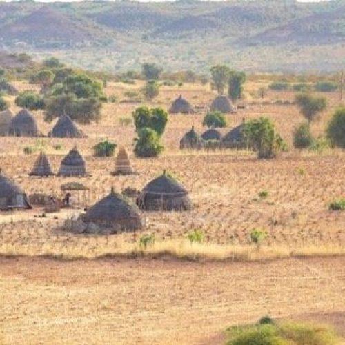 Africa: 5 miliardi di dollari per la Grande Muraglia Verde